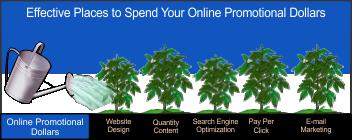 online promotional dollars