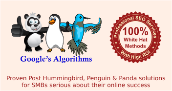 Proven post humming bird, penguin and panda solutions for SMBs serious about their online success